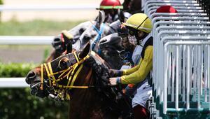At yarışı heyecanı 82 gün sonra yeniden başladı Veliefendide harika görüntüler...