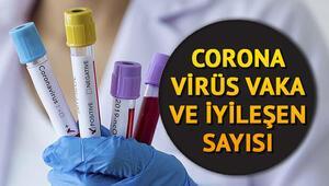 15 Haziran corona virüs günlük tablosu: Türkiye ve dünyada (korona virüs) koronavirüs vaka, iyileşen, ölüm sayısı haritası