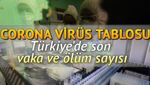Corona Virüs 14 Haziran son durum:  Dünya ve Türkiye koronavirüs tablosu vaka, ölüm sayıları.. Covid 19 risk haritası