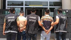 Şırnakta kaçakçılık operasyonu: 33 gözaltı