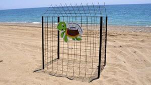 Manavgatta deniz kaplumbağası yuvalarına çitli koruma