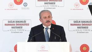 TBMM Başkanı Şentop: Barışı, kardeşliği yaymak için gayret ediyoruz
