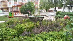 Huzur Parkı yenilendi