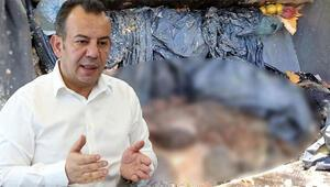 Ölü köpeklerin taşınma usulü tepki çekti, Belediye Başkanı özür diledi