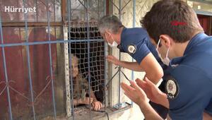 Evini su basan yaşlı kadın 21 kedisi için ağladı; evden çıkmak istemedi