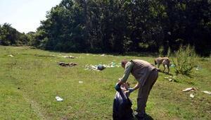 Longoz Ormanlarında bir kamyon çöp toplandı