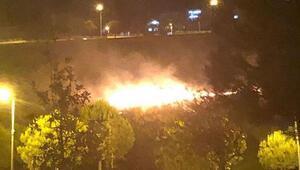 Rekreasyon alanının yakınında ot yangını