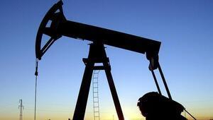 Petrol ithalatı nisanda yüzde 18,1 azaldı
