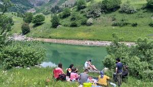 Artvinde bin 800 rakımlı köyde kamp keyfi