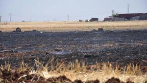 35 dönüme ekili arpa ve buğday, yangında küle döndü