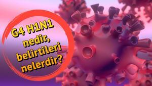 G4 H1N1 (domuz gribi) nedir Nasıl bulaşır İşte hastalıktan korunma yolları ve H1N1 belirtileri