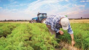 Çiftçi belgesi nasıl alınır E-Devlet çiftçi belgesi başvuru sayfası