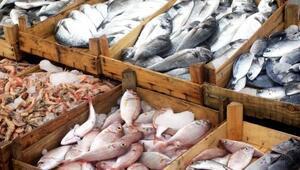 Hangi mevsimde hangi balıkları tüketmeli