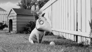 Tim Burtondan animasyon film Frankenweenie