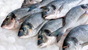 Taze balık, gözünden anlaşılır