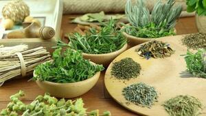 Kış için yapımı basit ve bitkisel 3 ev ilacı tarifi