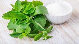 Şeker yerine stevya bitkisi kullanın