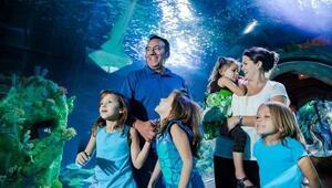 Sea Life'dan Babalar Günü'ne özel kampanya