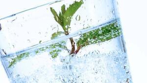 Sindirime en etkili doğal ilaç: Maden suyu
