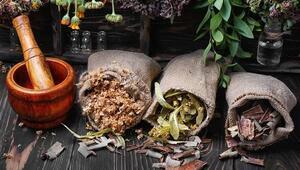 İbn-i Sina geleneksel tıbbı