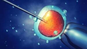 Tüp bebek laboratuvarlarında hangi işlemler yapılıyor