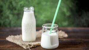 Bebekler için yoğurt hangi sütle mayalanmalı