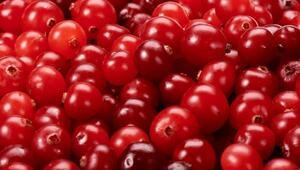 Kekreyemiş meyvesi nedir Kekreyemişin faydaları nelerdir