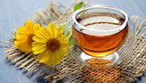 Hangi bitki çayı neye iyi geliyor
