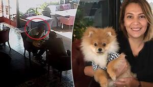 Bursada eski ortağı köpeğini alıkoydu, almaya gidince kendisine komplo kurulduğunu iddia etti
