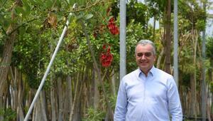 Konyaaltı 6 ayda 110 bin bitki üretti
