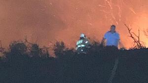 Maden Adasında çıkan yangını, balıkçı teknesiyle bölgeye giden itfaiyeciler söndürdü