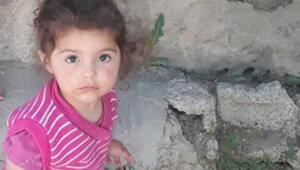Son dakika haber... Vanda iki yaşındaki kayıp Melekin cansız bedenine ulaşıldı