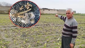 18 yıllık gizem Çiftlik evinde kemik parçaları bulundu