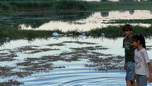 Antalyanın doğal güzelliği Kırkgözde çöp kirliliği