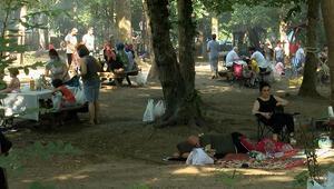 İstanbullular haftasonu piknik alanlarına ve plajlara akın ettiler