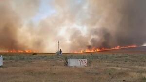 700 dönüm ekili arazi yangında zarar gördü