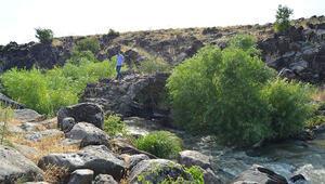 Gaziantepteki bu köprü yaklaşık 2000 yıllık; turizme kazandırılmayı bekliyor