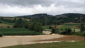 Sakarya Kaynarcada tarım arazileri sular altında kaldı