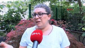 Dr. Öğretim Üyesi Aycan Gazyağcı: Mekanik olarak sineklerin virüsü taşıyabilme riski fazla