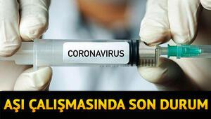 Corona virüs aşısı ne zaman çıkacak