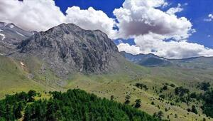 Konyanın yayla cenneti Anamas Dağı