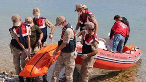 Van Gölü'nden acı haberler peş peşe geliyor Sayı 26'ya ulaştı…