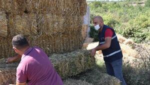 Balıkesir Büyükşehir Belediyesinden hayvan yetiştiricilerine yem desteği