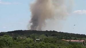 Son dakika haberi: Saros Körfezinde orman yangını