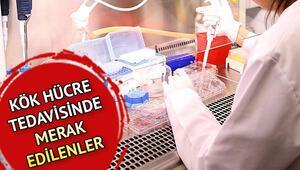 Kök hücre tedavisi nedir İşte Mehmet Ali Erbilin tedavisinde uygulanan kök hücre tedavisi bilgileri