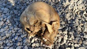 Bodrumda bulunan kafatası için İzmirden gelen ağabey: Kardeşime ait olduğunu düşünüyoruz