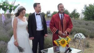 Çiftlerin yeni gözdesi Silivri'deki lavanta bahçeleri