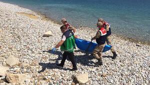Son dakika... Van Gölünde batan tekneden 3 acı haber daha Sayı 59a yükseldi