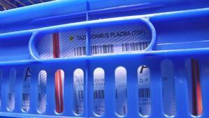 Eksi 40 derecedeki özel depolarda saklanıyor 3 yıl boyunca kullanılabiliyor