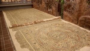 Kaçak kazıda ortaya çıkan 1800 yıllık elma mozaiği sergileniyor